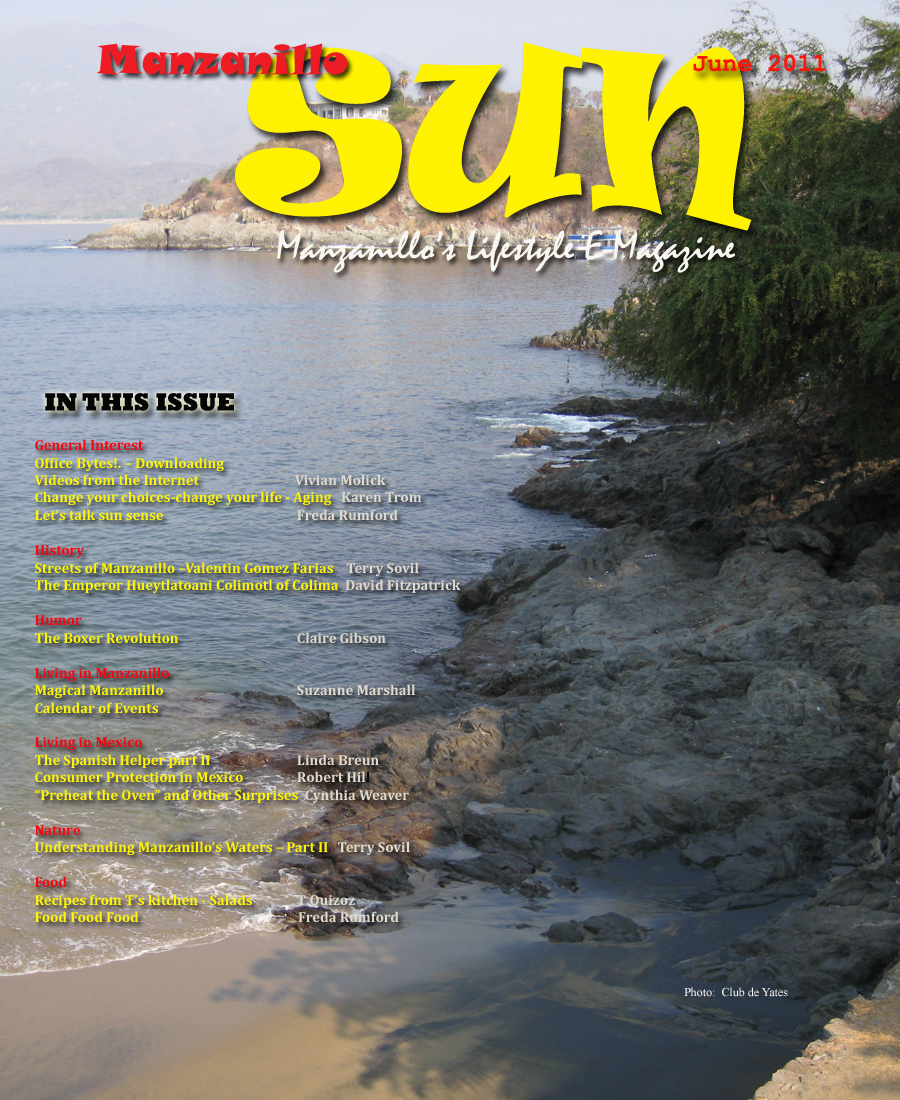 Manzanillo Sun June 2011 cover